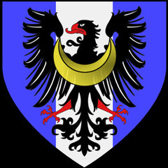 VikingTomi